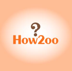how 2 logo
